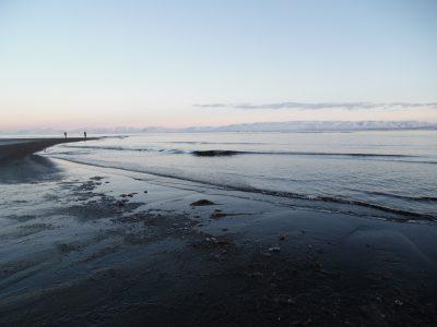 Am Strand von Vatsnes